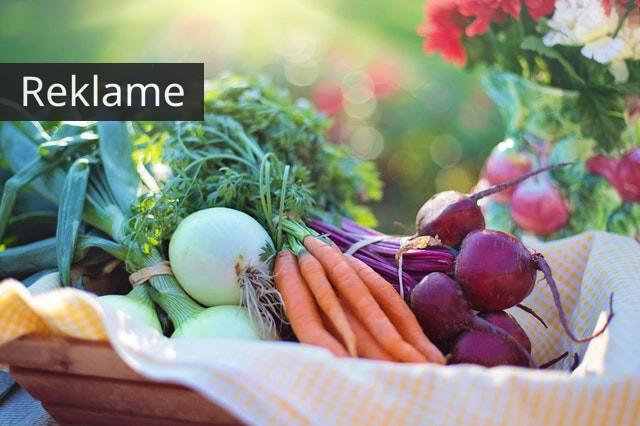 spis grøntsager og tab dig